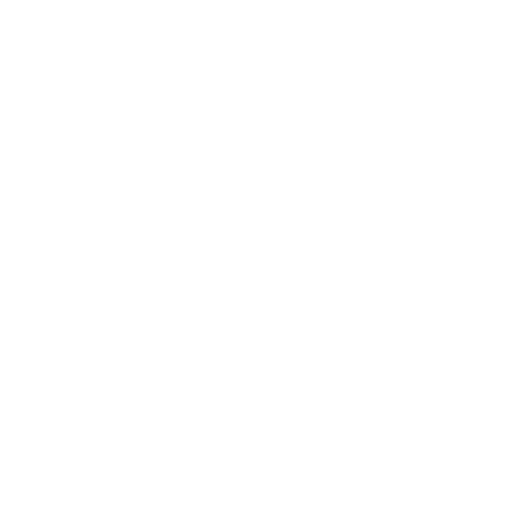 A New Day Studios Logo - white